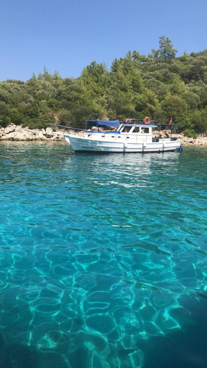 Private boat hire-ANYTIME