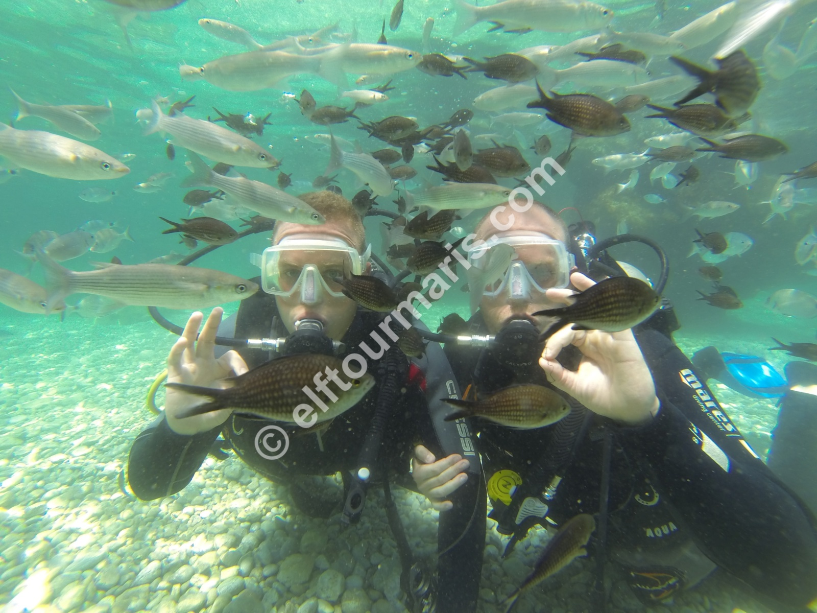 Scuba diving-EVERYDAY